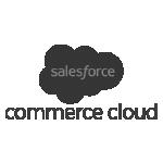 Retail Pro - salesforce - Retail Pro Integrations