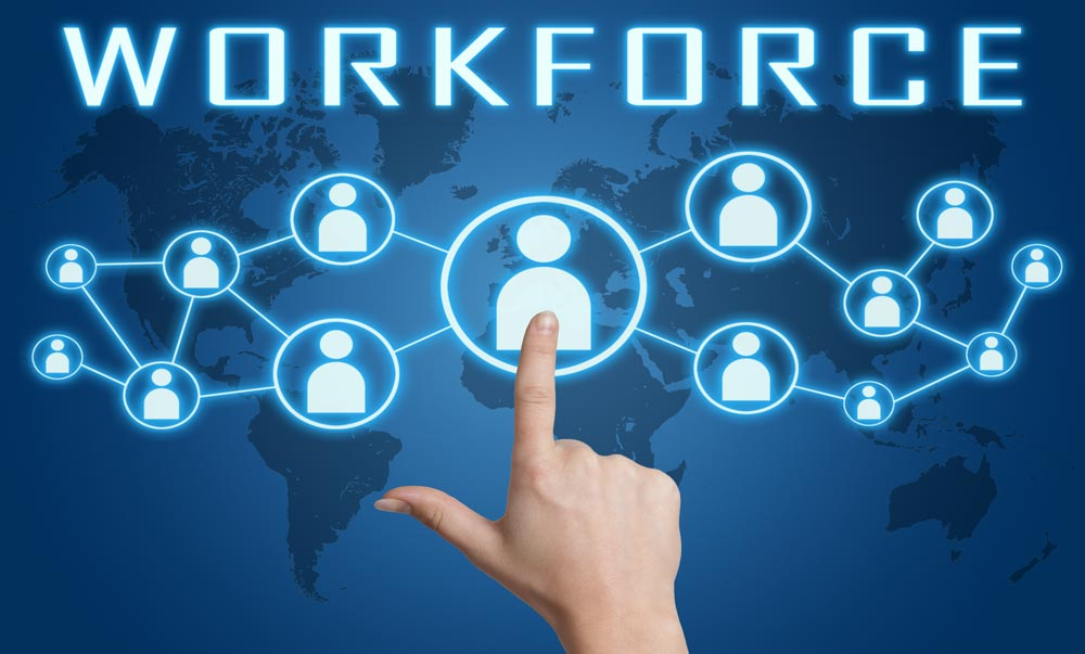 Things to keep in mind while buying an employee management software